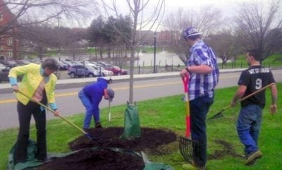 Development - Tree Campus USA - Arbor Day 2013 1