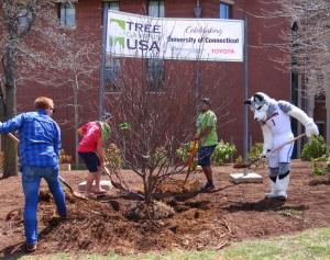 Development - Tree Campus USA - Arbor Day 2015 1
