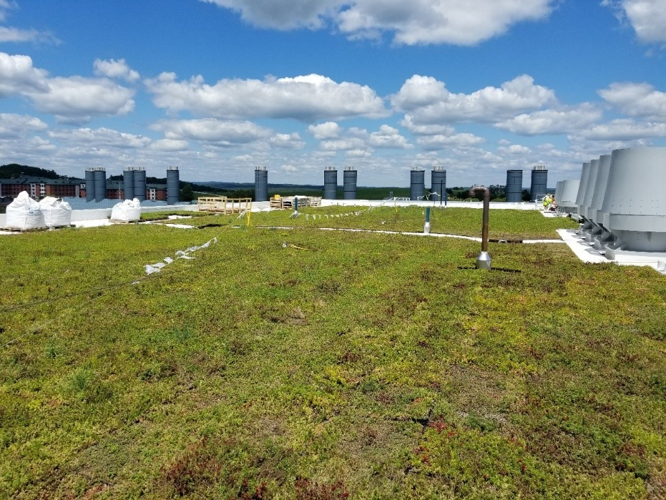 Green roof atop the new Engineering and Science Building