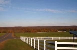 Horsebarn Hill Skyline